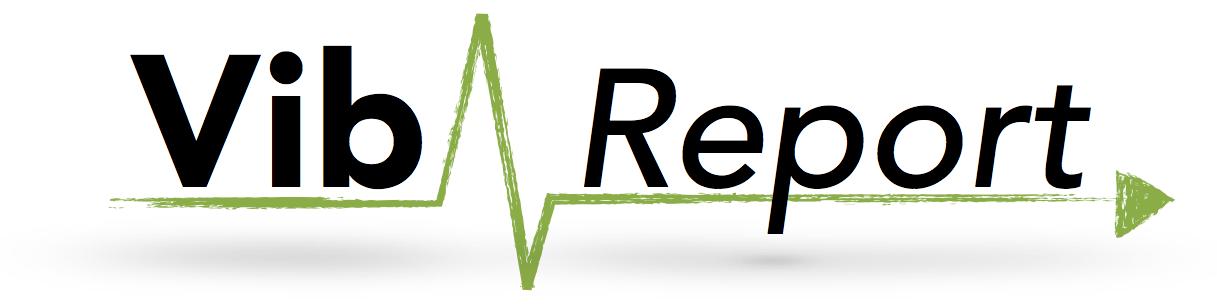 logo_vibreport